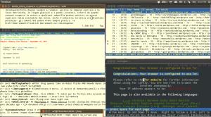 Uno screenshot del mio computer, per mostrare una varietà di strumenti gestiti senza interfaccia grafica, solo mediante testo e comandi.